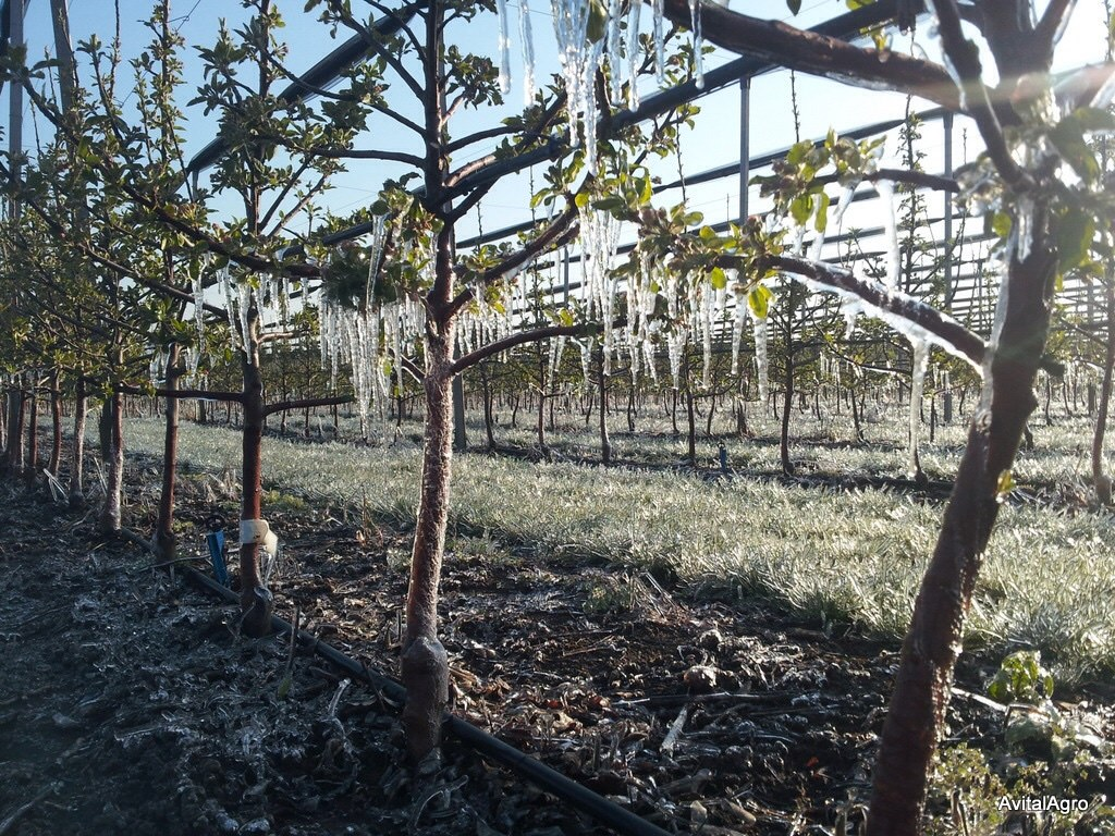 Frost protection and mitigation 2