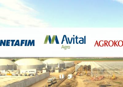 Netafim – Avital Agro – Agrokor